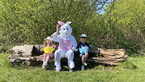 Easter Bunny Ashtons Easte Agents Warrington, Wigan and St.Helens